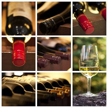 INTRODUCTORY WINE TASTING WORKSHOP IN BOURNEMOUTH